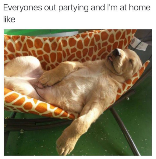 partypooped