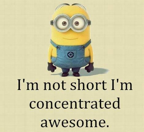 shortawesome